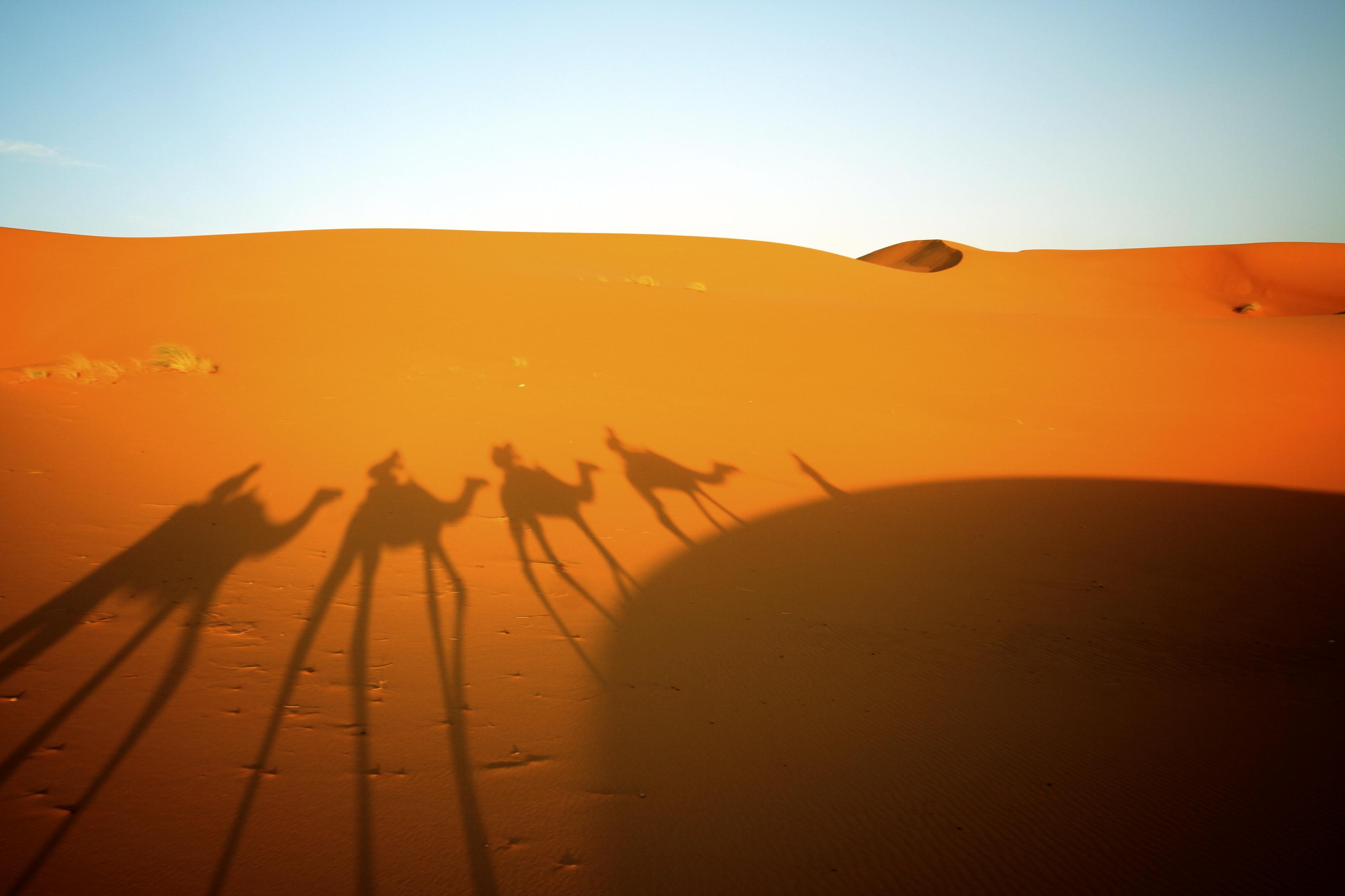 153892028_Morocco_rf_63979