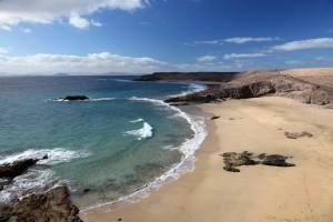 shutterstock_91477160_Lanzarote_beach_RF_72970