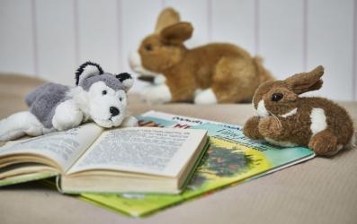 lasten kirjoja ja leluja