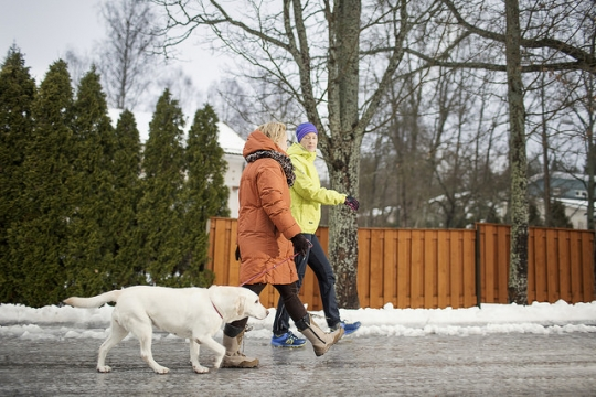 Kävelijät ja koira liukkaalla tiellä.